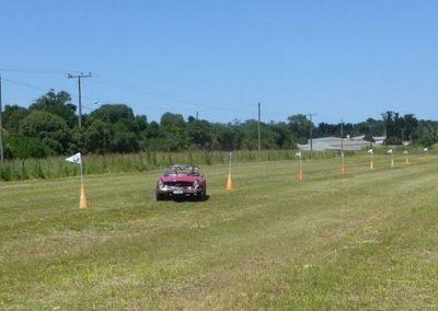 aeroclubmardelplata.rally1w3544